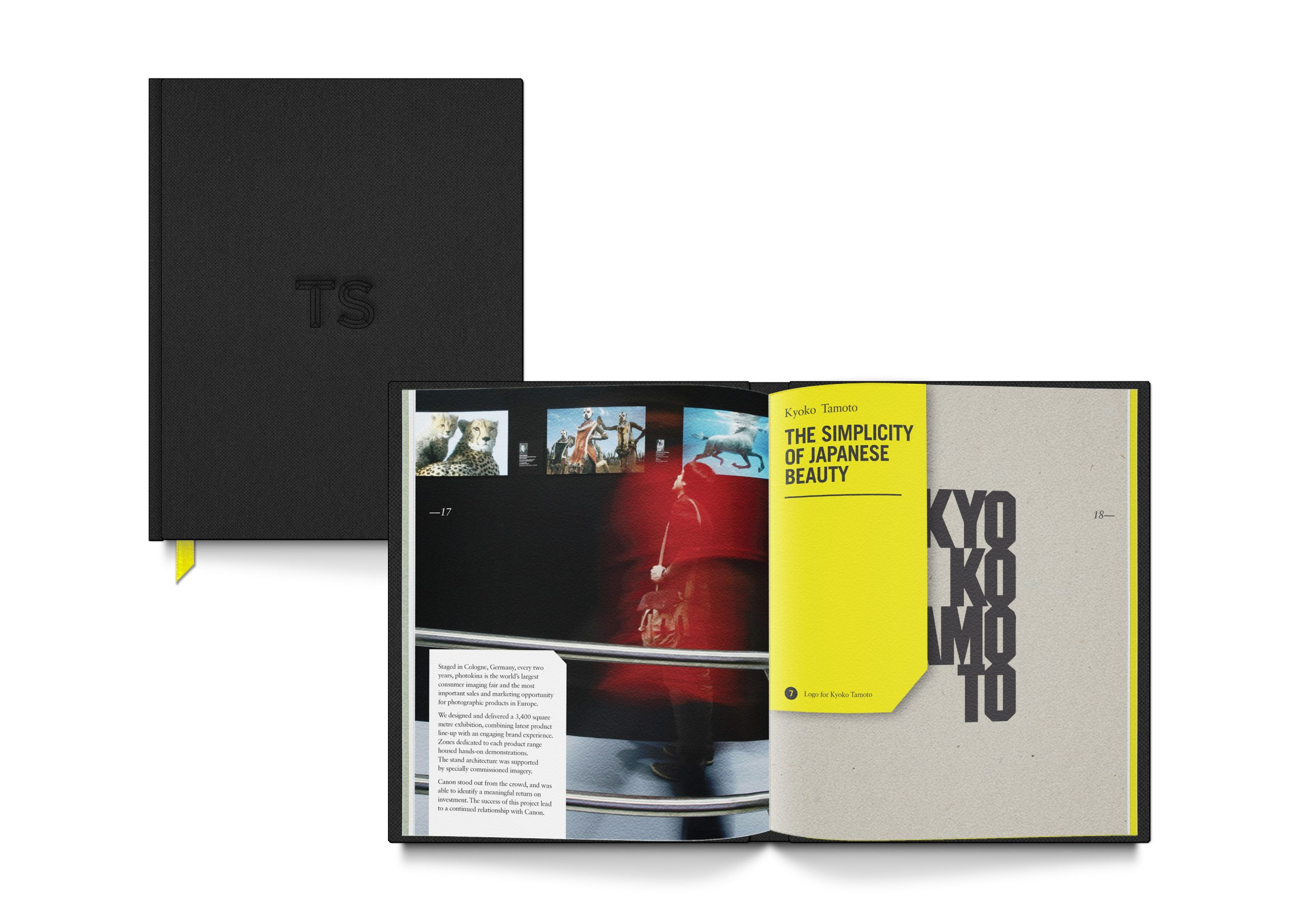TaplinScottBook02