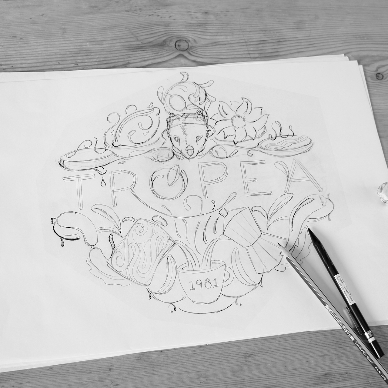 TropeaSketch3